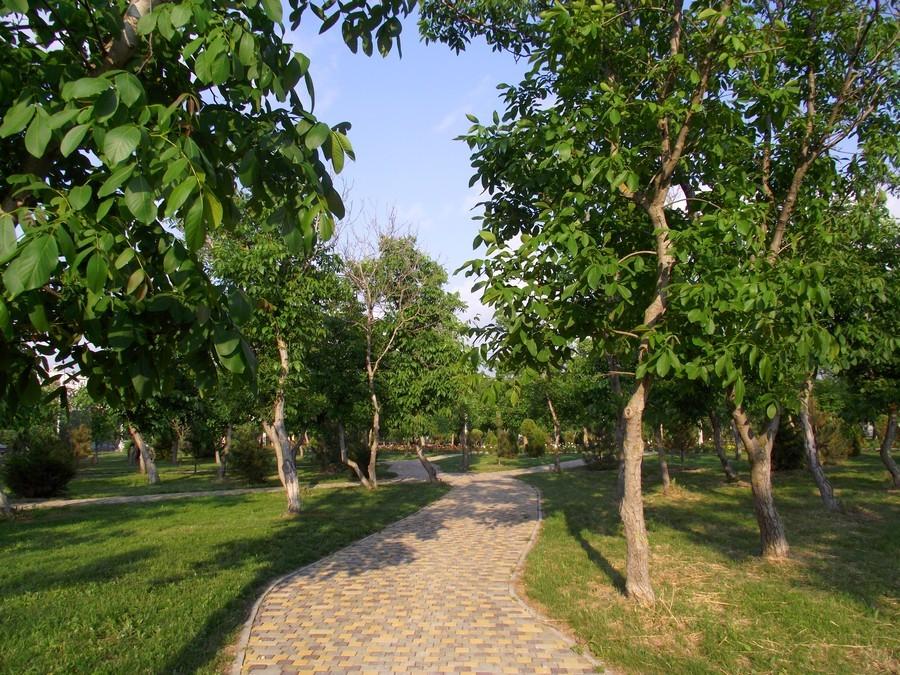 Витязево 2020 – Отдых в Живописном Месте Побережья(1)