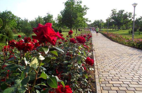 Витязево 2020 – Отдых в Живописном Месте Побережья(2)
